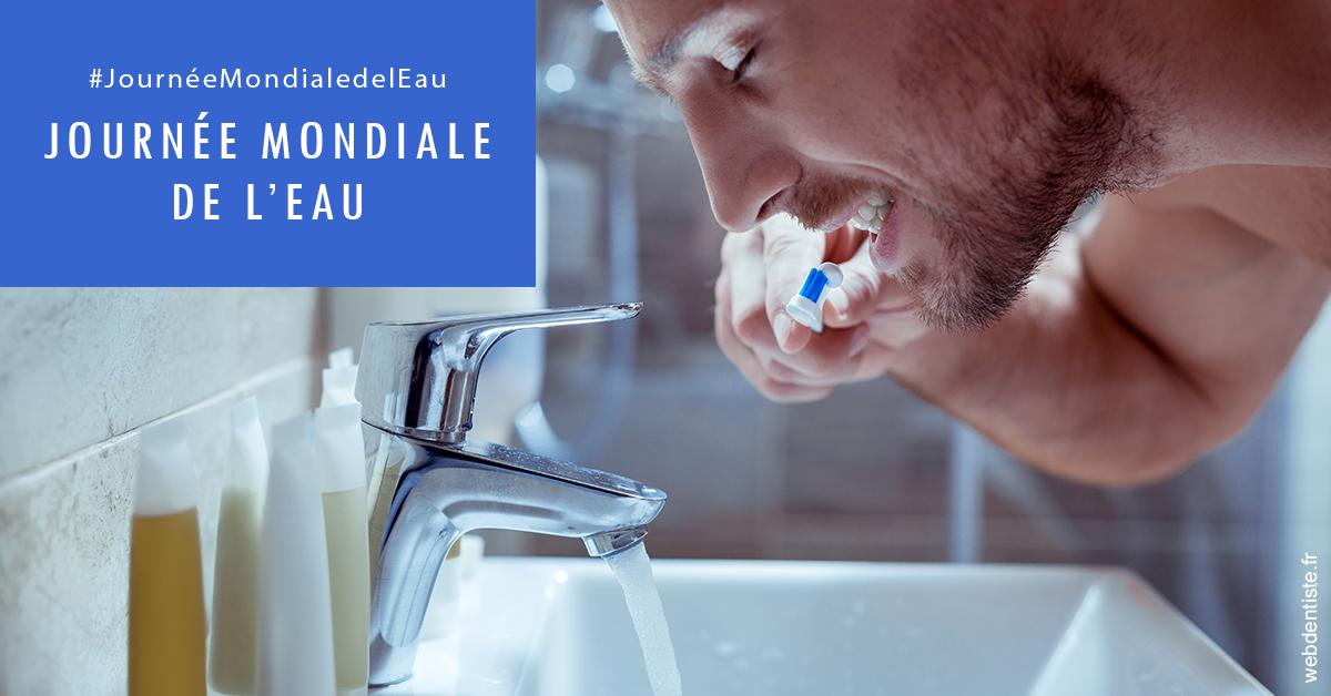 https://dr-pissis-patrick.chirurgiens-dentistes.fr/Journée de l'eau 2