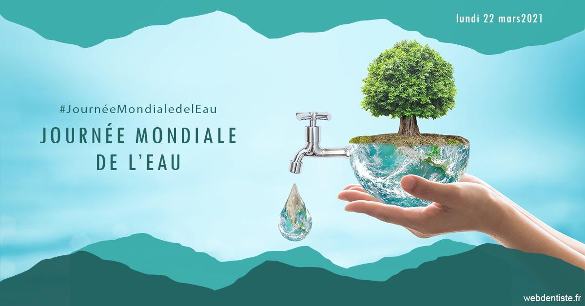 https://dr-pissis-patrick.chirurgiens-dentistes.fr/Journée de l'eau 1